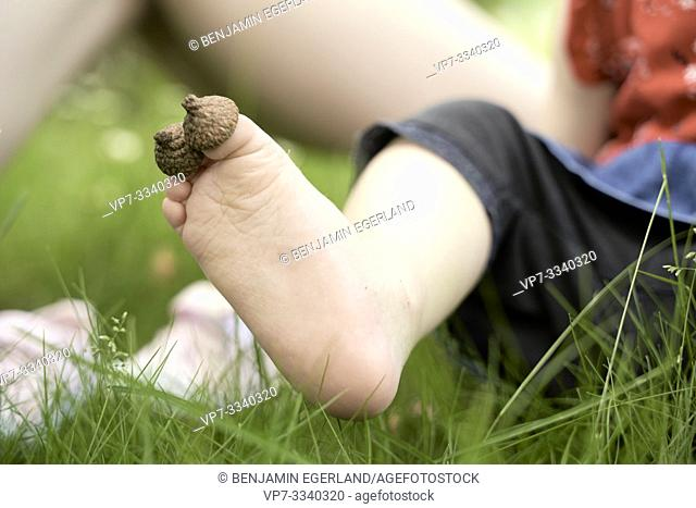 big toe, hallux, of baby toddler child dressed with natural acorn head, sitting on meadow
