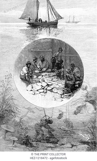Pearl Fishery, Torres Strait, Australia, 1886. Wood engraving from 'Picturesque Atlas of Australasia, Vol II', by Andrew Garran
