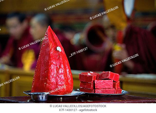 Offering,Puja in Dip Tse Chok Ling Monastery McLeod Ganj, Dharamsala, Himachal Pradesh state, India, Asia