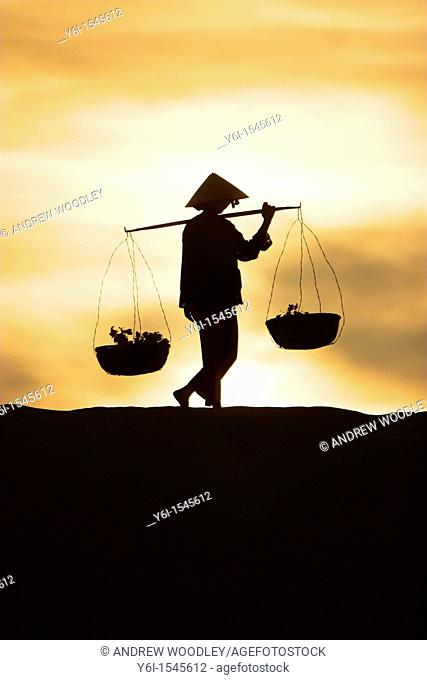 Woman with conical hat carries pannier baskets along crest of sand dune in sunrise near Mui Ne Vietnam