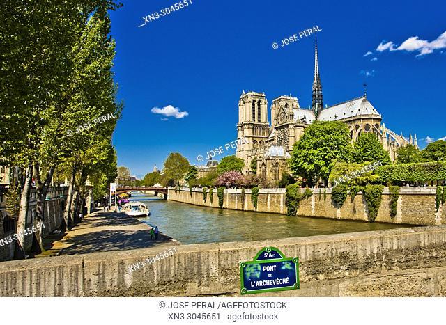 On background Notre-Dame Cathedral from Pont de l'Archevêché, Archbishop's Bridge, Île de la Cité, River Seine, Paris, France, Europe