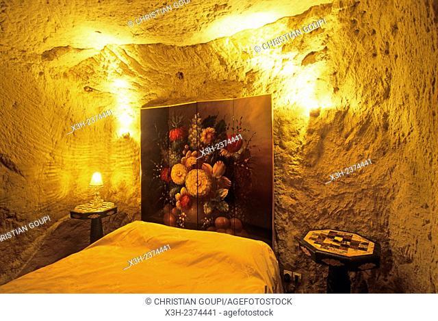 ''Demeure de la Vignole'', 4 stars Hotel, Turquant, Maine-et-Loire department, Pays de la Loire region, France, Europe