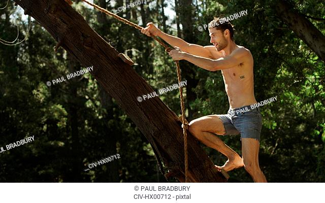 Young man holding rope swing in tree
