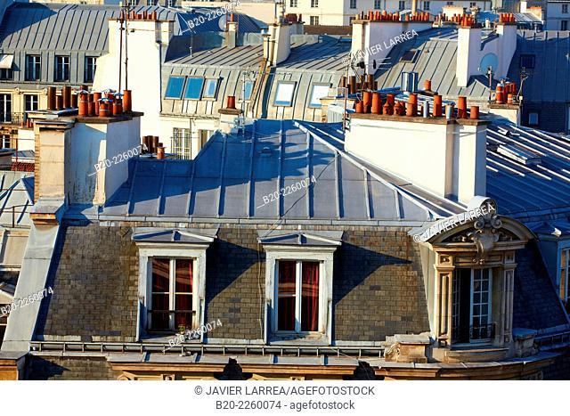 Parisian rooftops and chimneys. Latin Quartier. Paris. France