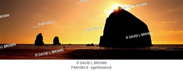 Pacific Ocean Sea Stacks, Olympic National Park, Washington, USA