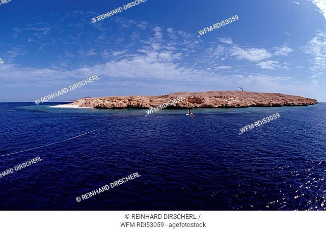 Rocky Island, Rocky Island Red Sea, Egypt