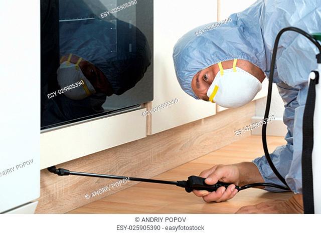 Mature exterminator spraying pesticide on wooden cabinet of kitchen