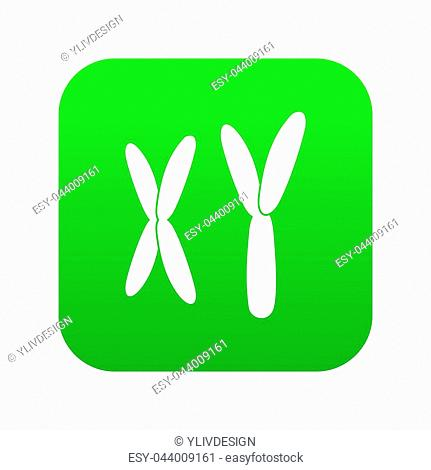 Human chromosomes icon digital green for any design isolated on white illustration