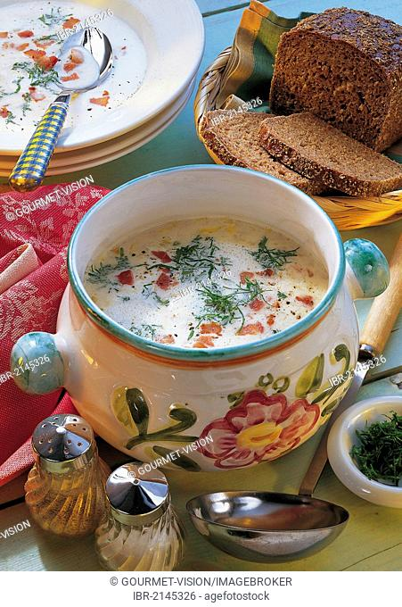 Cream of chicory soup with bacon bits and herbs, hot starter, Belgium