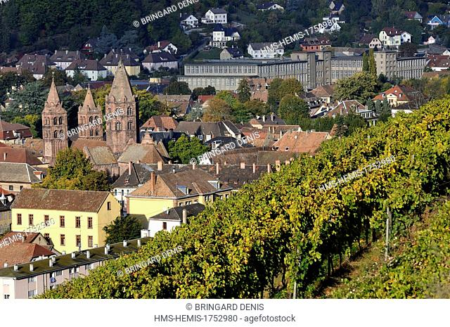France, Haut Rhin, Guebwiller, Saint Leger church, NSC Schlumberger 1920 factory from the vineyard