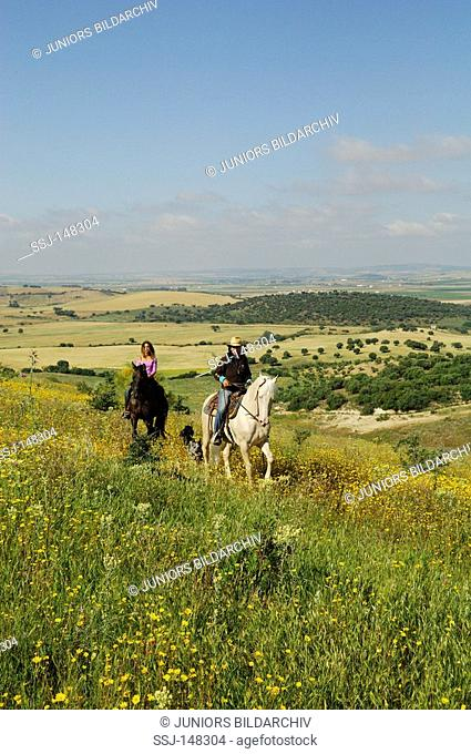 two riders on Lusitanos