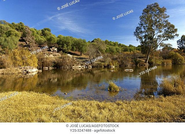Sierra Norte Natural Park - Viar river. Seville province. Region of Andalusia. Spain. Europe