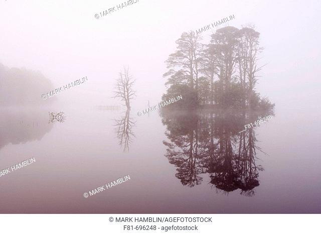 Loch Mallachie in mist  Abernethy  Scotland  September 2006