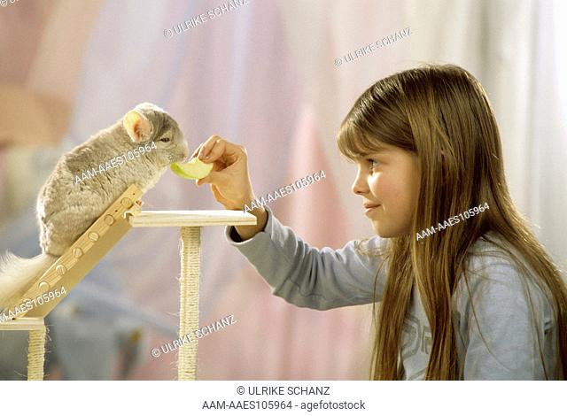 Young Girl with Pet Chinchilla