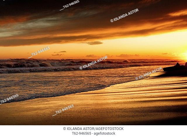 Sunset on the beach and beach slipper  Color  Costa Dorada, Spain