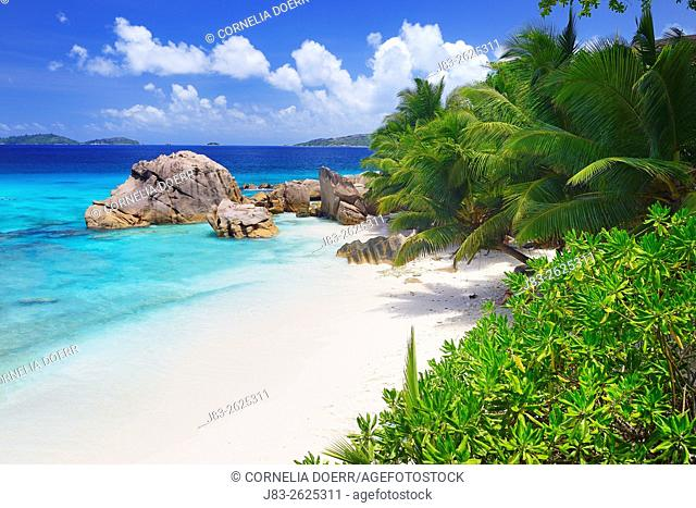 Famous beach Anse Patates with palm trees and sculpted rocks, La Digue Island, Seychelles, Indian Ocean, Africa
