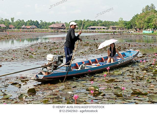 Thai woman with umbrella - Pink water lilies - Tale Noi - Patthalung - Thailand