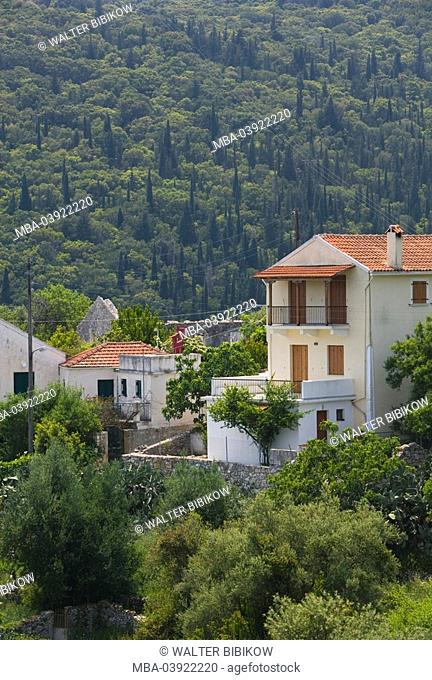 Greece, Ionic islands, island kefalonia, Matsoukata, residences, Europe, Mediterranean-island, destination, landscape, vegetation, trees, bushes, plants