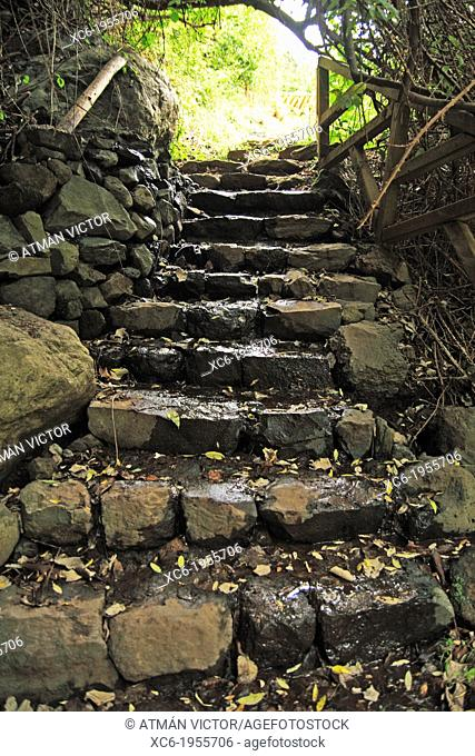 ancient stone stairway in Ruiz ravine. Tenerife island. Spain