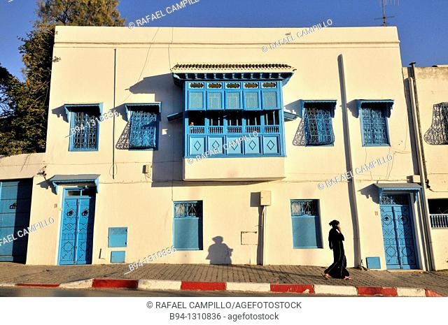 Typical house in Sidi Bou Said, town in northern of Tunisia