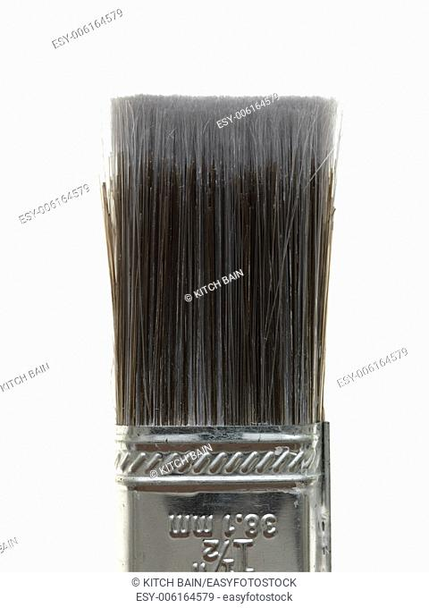 Paint brushes isolated against a white background