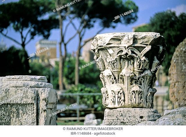 Capitals of the Basilica Aemilia, Roman Forum, Rome, Lazio, Italy, Europe