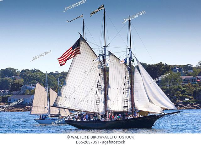 USA, Massachusetts, Cape Ann, Gloucester, annual Gloucester Schooner Festival, schooner Parade of Sail