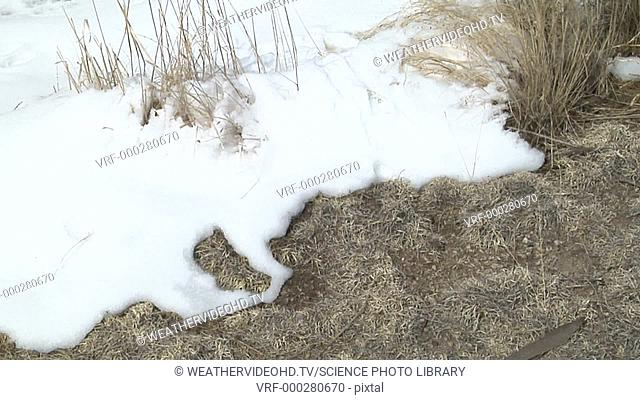 Timelapse footage of snow from a spring storm melting in sunshine and dry wind. Filmed in Colorado, USA, in spring