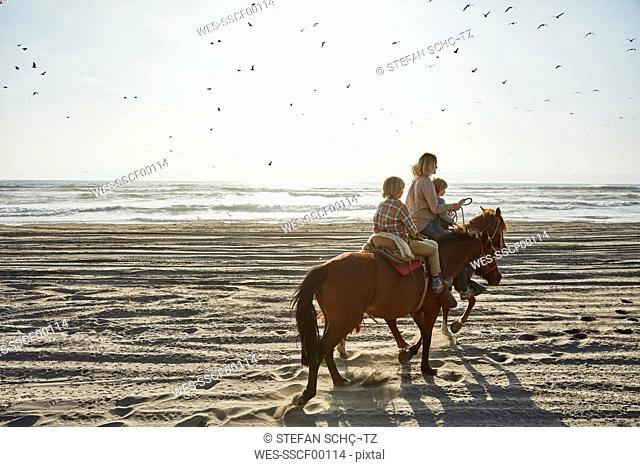 Chile, Vina del Mar, mother with two sons riding horses on the beach