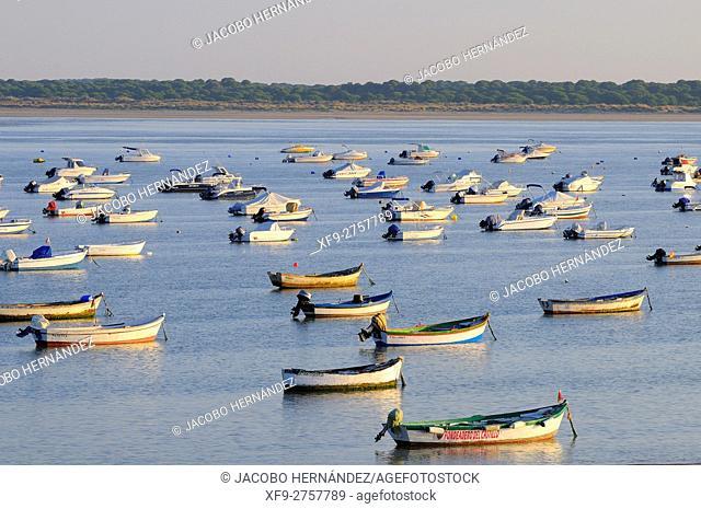 Guadalquivir river estuary.Sanlúcar de Barrameda.Cádiz province.Andalusia.Spain