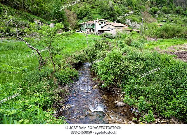 Arnin. Asturias. Spain