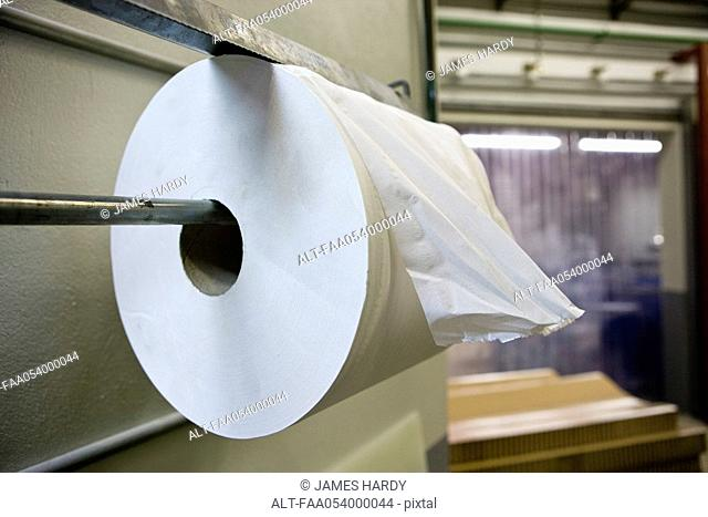 Fabric coating plant, paper towel roll hanging on rack