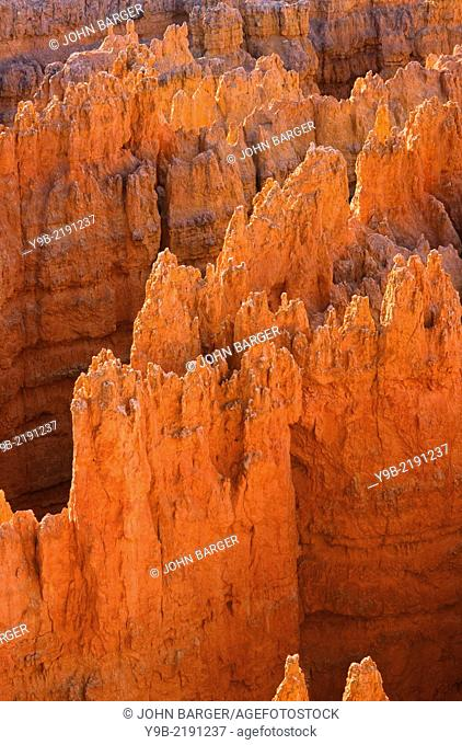 Early morning light grazes tops of hoodoos, near Sunset Point, Bryce Canyon National Park, Utah, USA