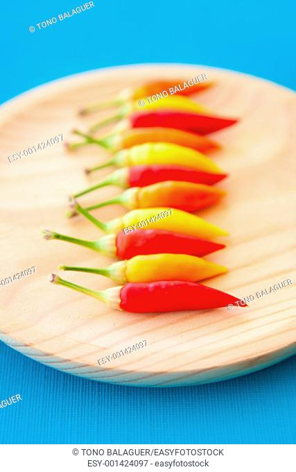 colorful hot chili peppers in a row on wooden plate