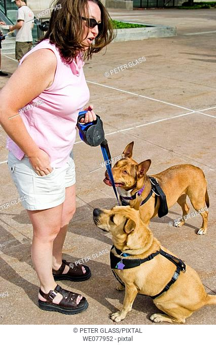 Woman giving commands to her two dogs