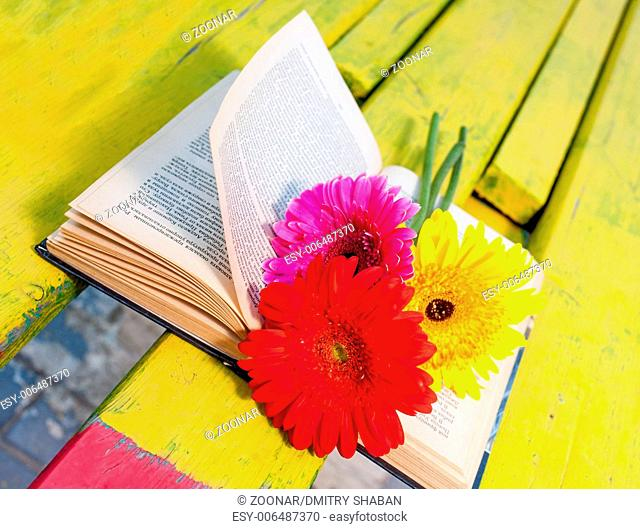 Old book and flowers on bench nobody