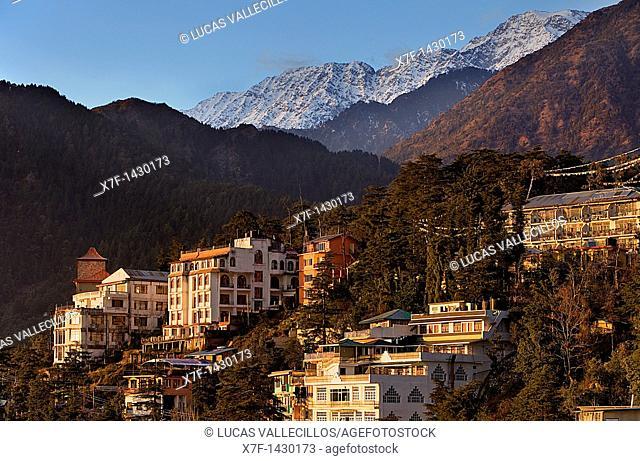 McLeod Ganj, Dharamsala, Himachal Pradesh state, India, Asia