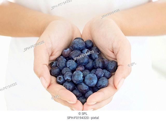 Woman holding blueberries in hands