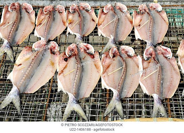 Hong Kong: dry fish at Tai O village, on Lantau Island