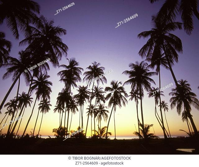 Caribbean, Nevis, Pinney's Beach, sunset,