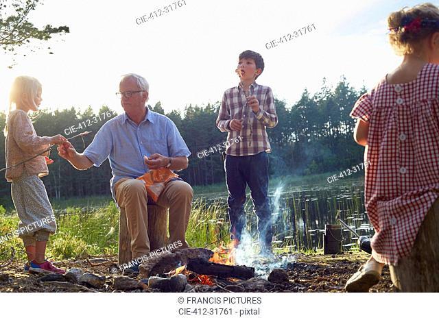 Grandfather and grandchildren enjoying campfire at lakeside