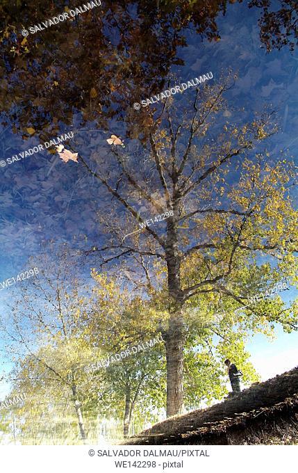 creative reflections, reflections on the lake banyoles,location girona,catalonia,spain europe,
