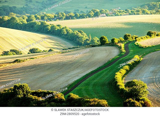 Late summer afternoon in South Downs National Park near Lewes, East Sussex, England