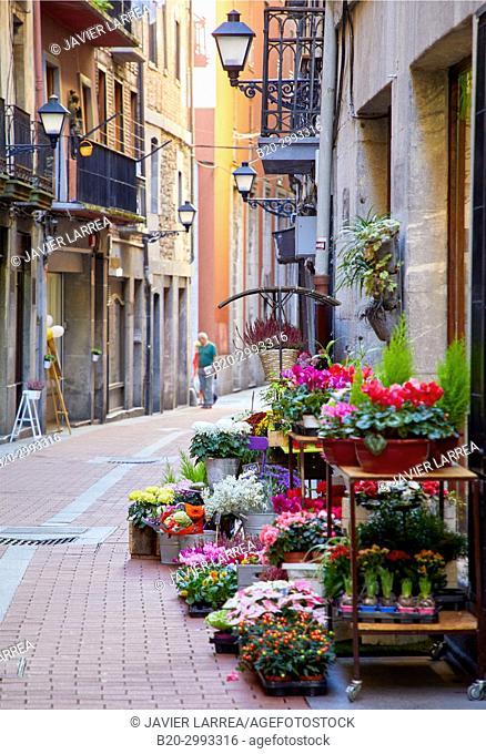 Florist, Tolosa, Gipuzkoa, Basque Country, Spain, Europe