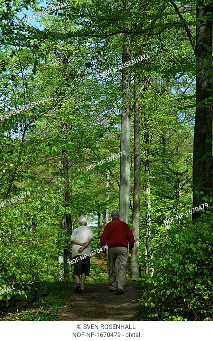 Rear view of a senior couple walking in a forest, Skane, Sweden