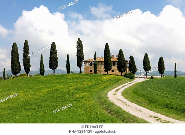 Tuscan villa, winding path and cypress trees with blue sky near Pienza, Tuscany, Italy, Europe