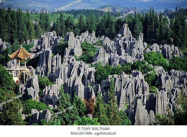 Limestone pinnacles in Shilin, Stone Forest, at Lunan, Yunnan, China