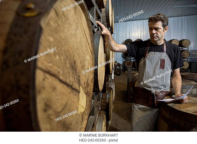 Worker examining oak barrels in distillery cellar