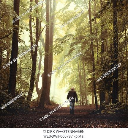 Germany, Man walking in forest
