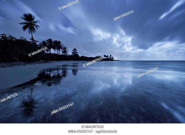 Guadeloupe, the Caribbean, France, island, tropical, paradise, moon, night, blue, mirroring, sea, water, palms, beach, Sand, clouds, scenery, Curacao, light